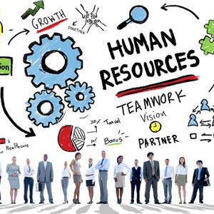 Equip Your HR Team with Data Literacy Skills
