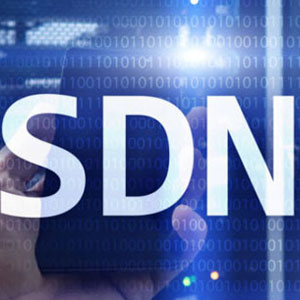 Software Defined Networking to Foster Simplified IT Solutions